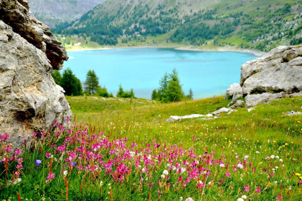 allos-val-allos-landscape-raisons-de-venir-allos-departement-06-haute-provence-alpes-du-sud-mercantour