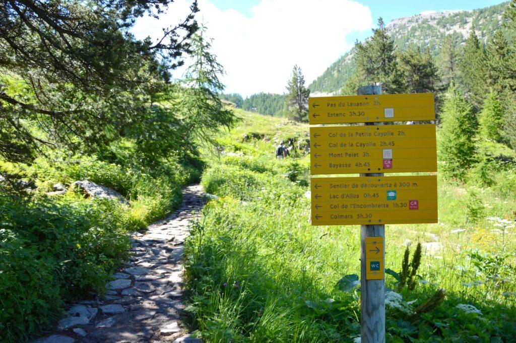 marc-aynie-mercantour-guide-alpes-allos-haute-provence-faune-flore-mercantour-sud-de-la-france-col-de-l-encombrette-pas-du-lausson-lac-mont-pelat