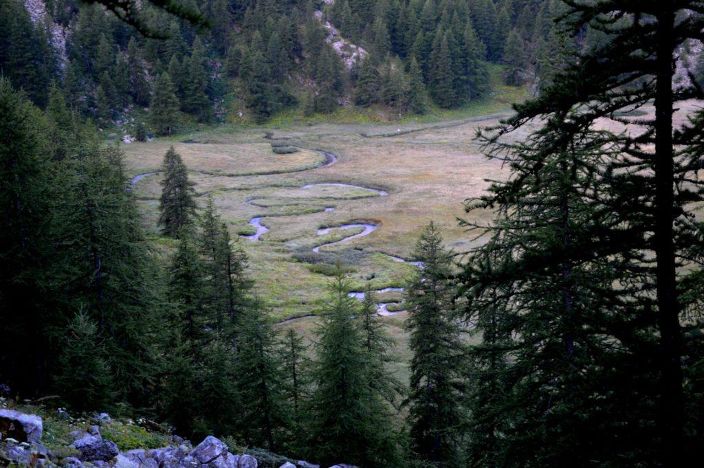 marc-aynie-mercantour-guide-alpes-allos-haute-provence-faune-flore-mercantour-sud-de-la-france-meandre-serpantine-nature-meandres
