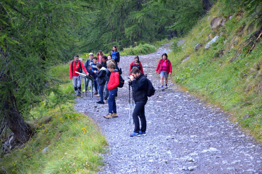 marc-aynie-mercantour-guide-alpes-allos-haute-provence-faune-flore-mercantour-sud-de-la-france-groupe-randonnee-montagne