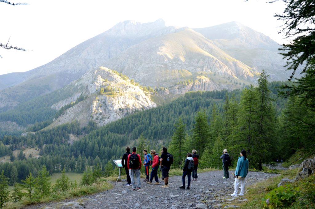 marc-aynie-mercantour-guide-alpes-allos-haute-provence-faune-flore-mercantour-sud-de-la-france-montagne-randonnee-pelat