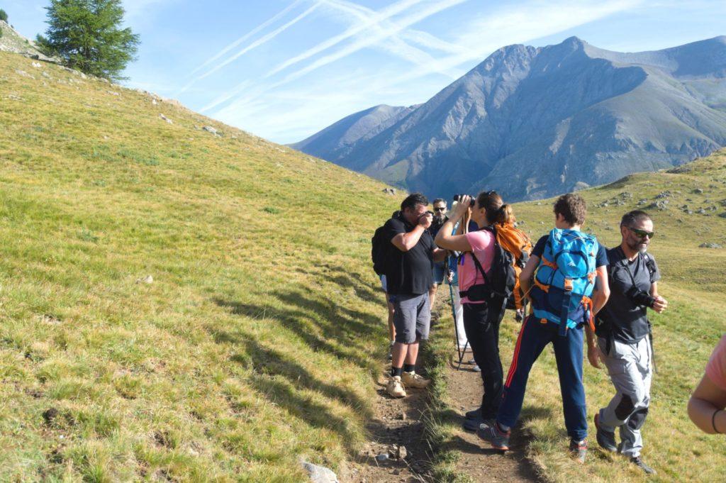 marc-aynie-mercantour-guide-alpes-allos-haute-provence-faune-flore-mercantour-sud-de-la-france-montagne-jumelles-vautours