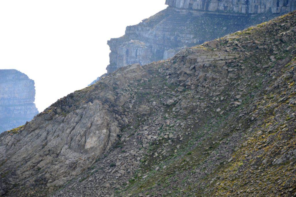 marc-aynie-mercantour-guide-alpes-allos-haute-provence-faune-flore-mercantour-sud-de-la-france-petite-tour