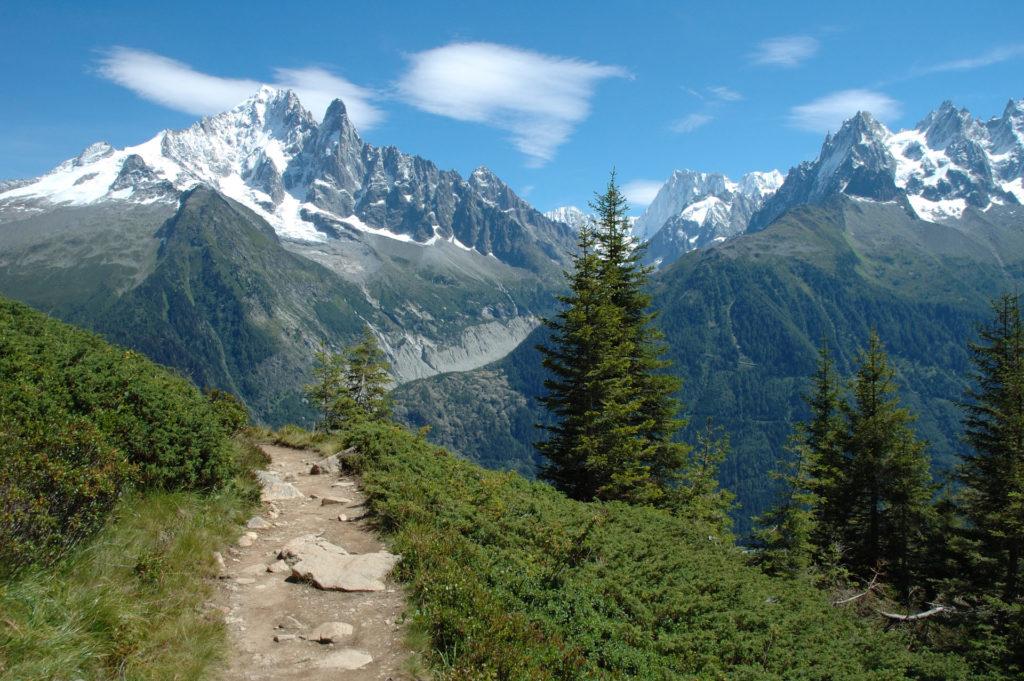 paysages-alpes-alpissime-revegetalisation-semences-endemiques-preservation-ecologie-france