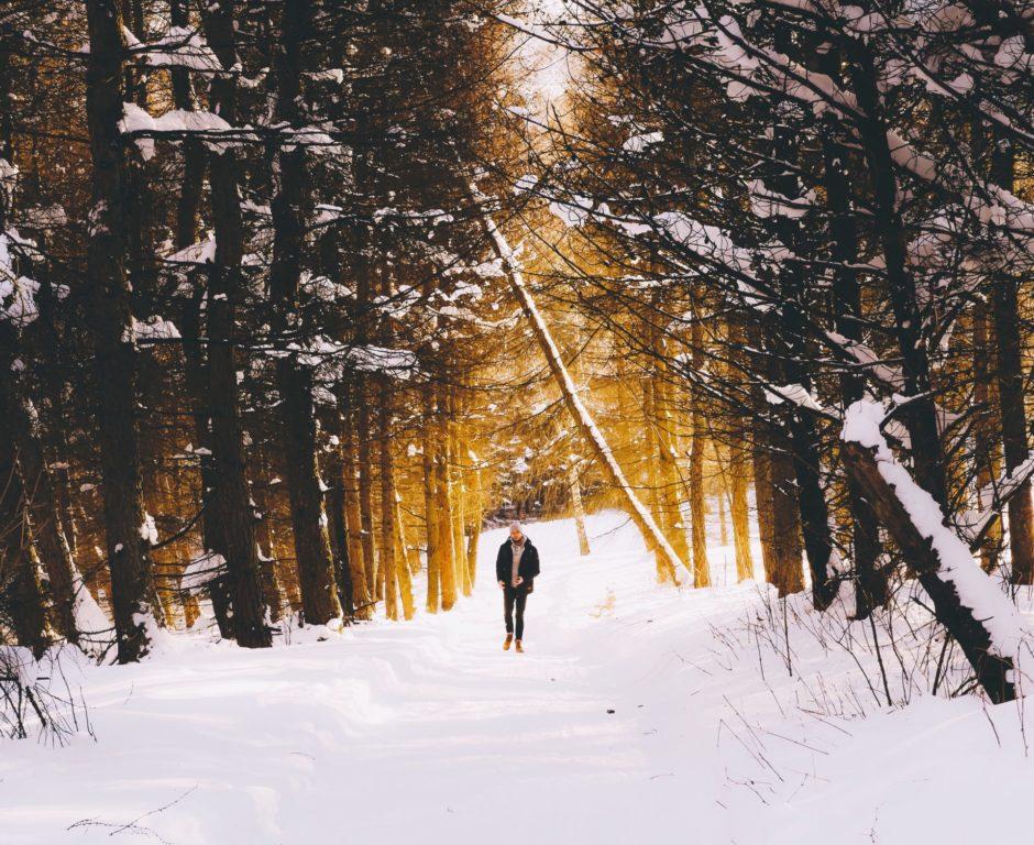 plagne-montchavin-lescoches-paradiski-sport-hiver-montagne-neige-savoie-tarentaise-ski-winter-paysage-familles-vacances-2021-walk-hike