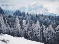 montchavin-les-coches-la-plagne-hiver-neige-activités-famille-vacances