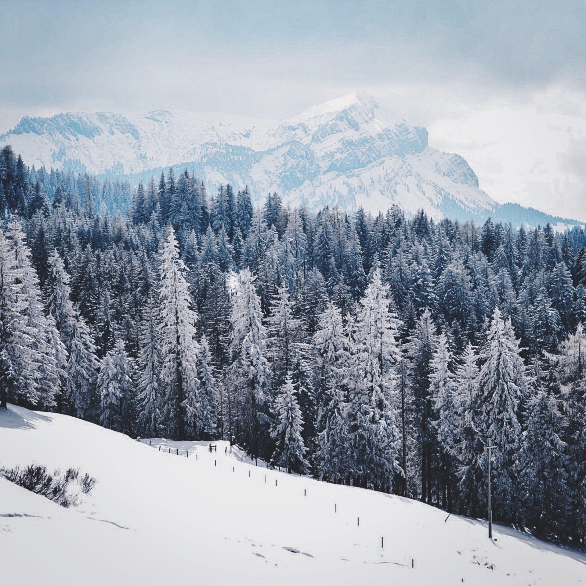 Top 5 des raisons de choisir Montchavin-Les Coches pour vos vacances au ski à la Plagne