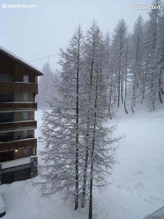 location-appartement-Val-d'Allos-La-Foux-5-personnes-1365-1-Alpissime